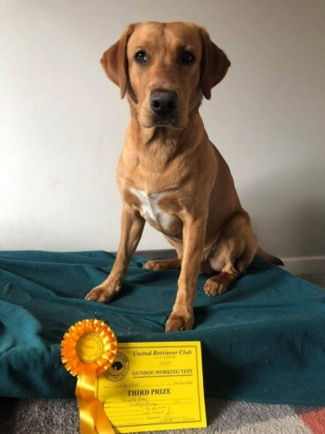 Hobbs and Certificate